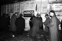 Tobacco sale at Middle Warehouse, Farmville, Va., 1962-1962